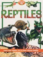 Reptiles  : Learn How Reptiles Live in their Natural Habitat - Close Up Series