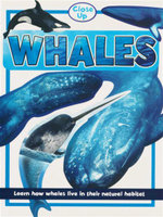 Whales : Close Up Series : Learn How Whales Live in their Natural Habitat - Sally Morgan