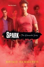 Spark : The Elemental Series : Book 2 - Brigid Kemmerer
