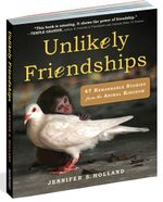Unlikely Friendships : 50 Remarkable Stories from the Animal Kingdom - Jennifer Holland