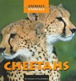 Cheetahs - Diana Estigarribia