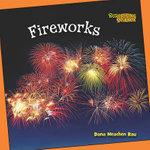 Fireworks - Dana Meachen Rau