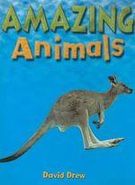 Amazing Animals - David Drew