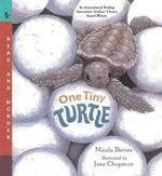 One Tiny Turtle  - Nicola Davies