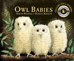 Owl Babies : Candlewick Storybook Animations - Martin Waddell