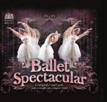 Ballet Spectacular : A Young Ballet Lover's Guide and an Insight Into a Magical World - Lisa Miles