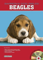Beagles : Beagle - Eve Adamson