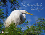 New Jersey Birds and Beyond : Born Survivors - Susan Puder