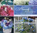 Heavenly Hydrangeas : A Practical Guide for the Home Gardener - Joan Harrison