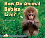 How Do Animal Babies Live? - Faith Hickman Brynie