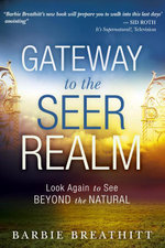 The Gateway to the Seer Realm : Look Again to See Beyond the Natural - Barbie Breathitt