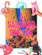 A Saguaro Cactus : Small Worlds - Jen Green