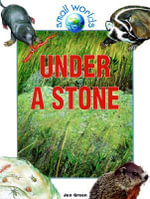 Under a Stone : Small Worlds - Jen Green