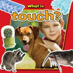 What Is Touch? - Paula Smith
