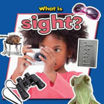 What Is Sight? - Paula Smith