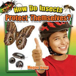 How Do Insects Protect Themselves? : Insects Close-Up - Megan Kopp