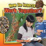 How Do Insects Work Together? : Insects Close-Up - Megan Kopp