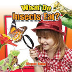 What Do Insects Eat? : Insects Close-Up - Megan Kopp