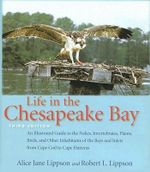 Life in the Chesapeake Bay : An Illustrated Reference - Alice Jane Lippson
