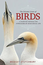 The Private Lives of Birds : A Scientist Reveals the Intricacies of Avian Social Life - Bridget Stutchbury