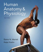 Human Anatomy and Physiology : Alternative Etext Formats - Elaine N. Marieb
