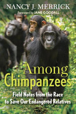 Among Chimpanzees : Field Notes from the Race to Save Our Endangered Relatives - Nancy J. Merrick