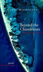Beyond the Chandeleurs : Practical Guidebook for Hospital Visitation - David Middleton