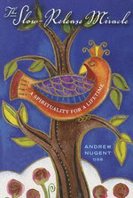 The Slow-Release Miracle : A Spirituality for a Lifetime - Andrew Nugent