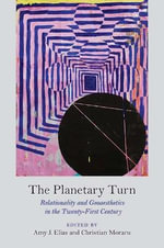 The Planetary Turn : Relationality and Geoaesthetics in the Twenty-First Century