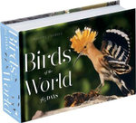 Birds of the World : 365 Days - Philippe J Dubois