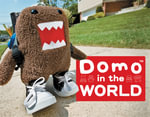 Domo in the World - Iain Browne