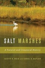 Salt Marshes - Carol Butler
