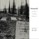 Boneyards : Detroit Under Ground - Richard Bak