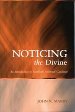 Noticing the Divine : An Introduction to Interfaith Spiritual Guidance - John R. Mabry