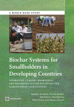 Biochar Systems for Smallholders in Developing Countries : Leveraging Current Knowledge and Exploring Future Potential for Climate-Smart Agriculture - Sebastian B. Scholz