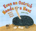 Even an Ostrich Needs a Nest : Where Birds Begin - Irene Kelly