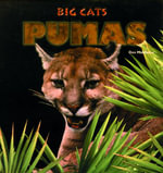 Pumas - Don Middleton