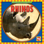 Rhinos : Animals I See at the Zoo (Hardcover) - Kathleen Pohl