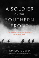 A Soldier on the Southern Front : The Classic Italian Memoir of World War 1 - Emilio Lussu