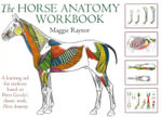 Horse Anatomy Workbook : A Learning Aid for Students Based on Peter Goody's Classic Work, Horse Anatomy - Maggie Raynor