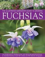 The Illustrated Gardener's Guide to Growing Fuchsias : The complete guide to cultivating fuchsias, with step-by-step gardenming techniques, an illustrated directory of over 500 varieties and 800 beautiful photographs - John Nicholass
