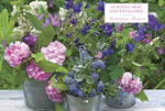 Decorative Flowers - Peony Press
