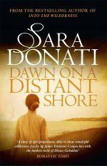 Dawn on a Distant Shore : Into the Wilderness - Sara Donati