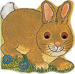 Pocket Bunny : Pocket Pals (Safari Ltd) - M. Twinn