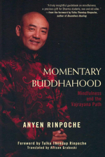 Momentary Buddhahood : Mindfulness and the Vajrayana Path - Anyen Rinpoche