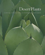 Desert Plants : A Curator's Introduction to the Huntington Desert Garden - Gary Lyons