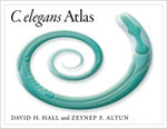C. Elegans Atlas - David Hall