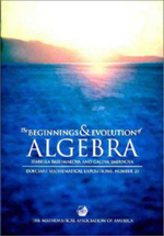 The Beginnings and Evolution of Algebra : Dolciani Mathematical Expositions - I. G. Bashmakova