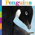 Seedlings : Penguins - Kate Riggs