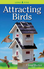 Attracting Birds : A Spiritual Journey - Elaine Butler